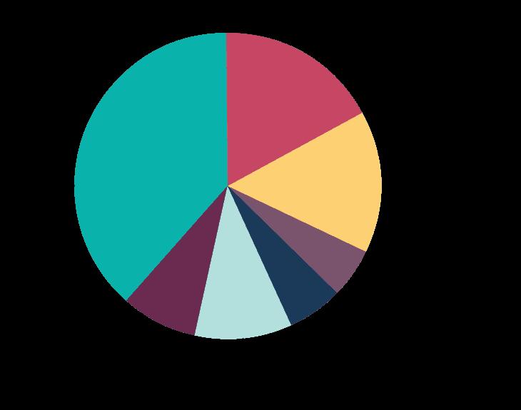 infographic on international volunteering opportunities